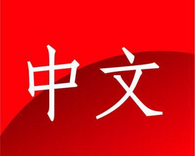 Chinese Level 5