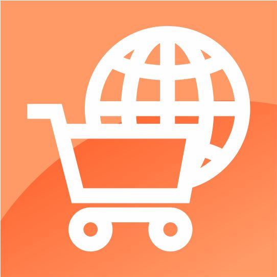 Basic Fundamentals of E-Commerce Course