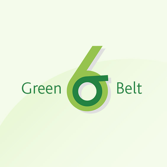 Six Sigma Green Belt Masterclass (includes a GB Case Study)