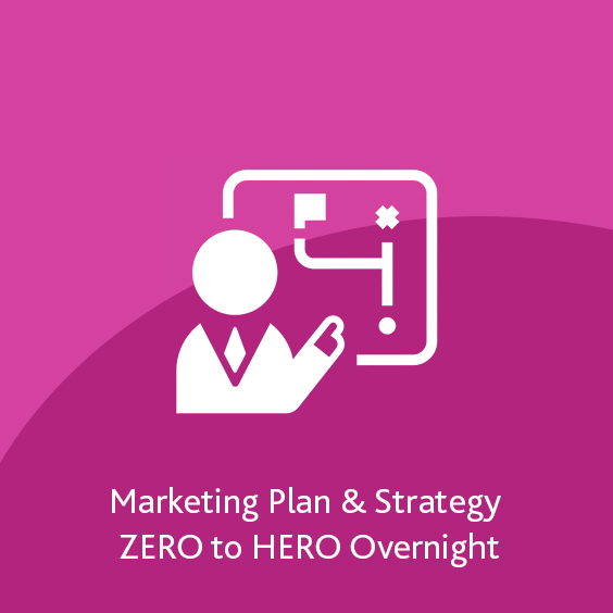 Marketing Plan & Strategy ZERO to HERO Overnight